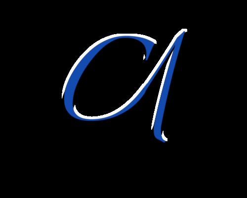 cameraonephoto.com Logo